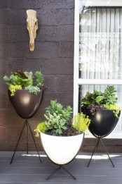 black and white bowl planters on black stands are a nice solution for a modern or Nordic backyard