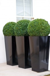 tall black planters with green topiaries are chic modern outdoor decorations to rock