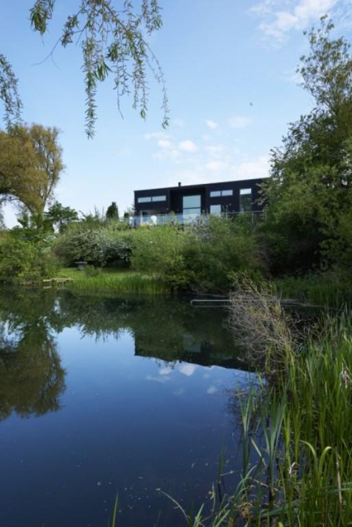 Modern Pop Art House Close To Nature