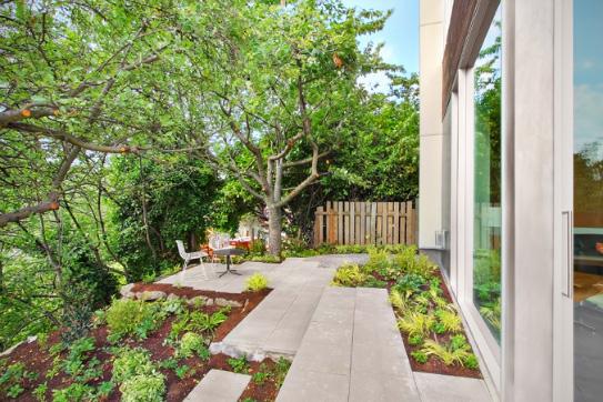 Modern Shed Backyard House
