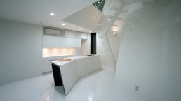 Novela Modernist House Design