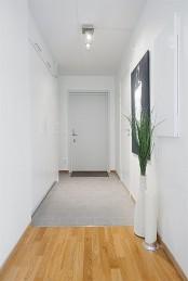 Open Plan Studio Apartment