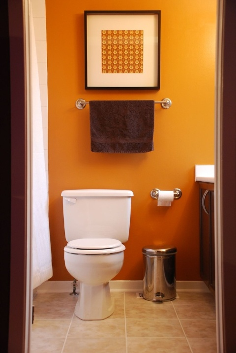 a small bathroom with orange walls and a matching artwork to create a bright and vivacious look