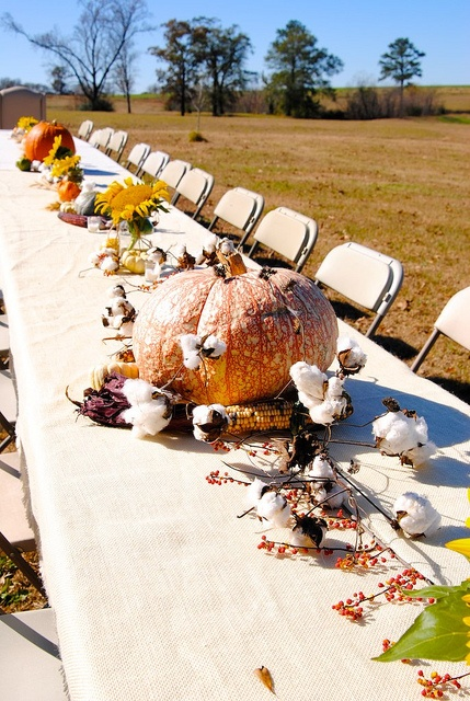 decorate your table with pumpkins, cotton, corn cobs and berries on branches for a Thanksgiving party