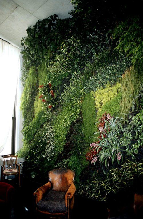 Picture Of peaceful indoor living wall designs for any home  12