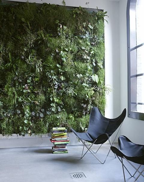 Picture Of peaceful indoor living wall designs for any home  13