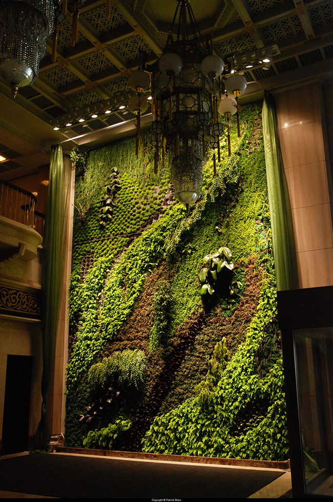 Picture Of peaceful indoor living wall designs for any home  14