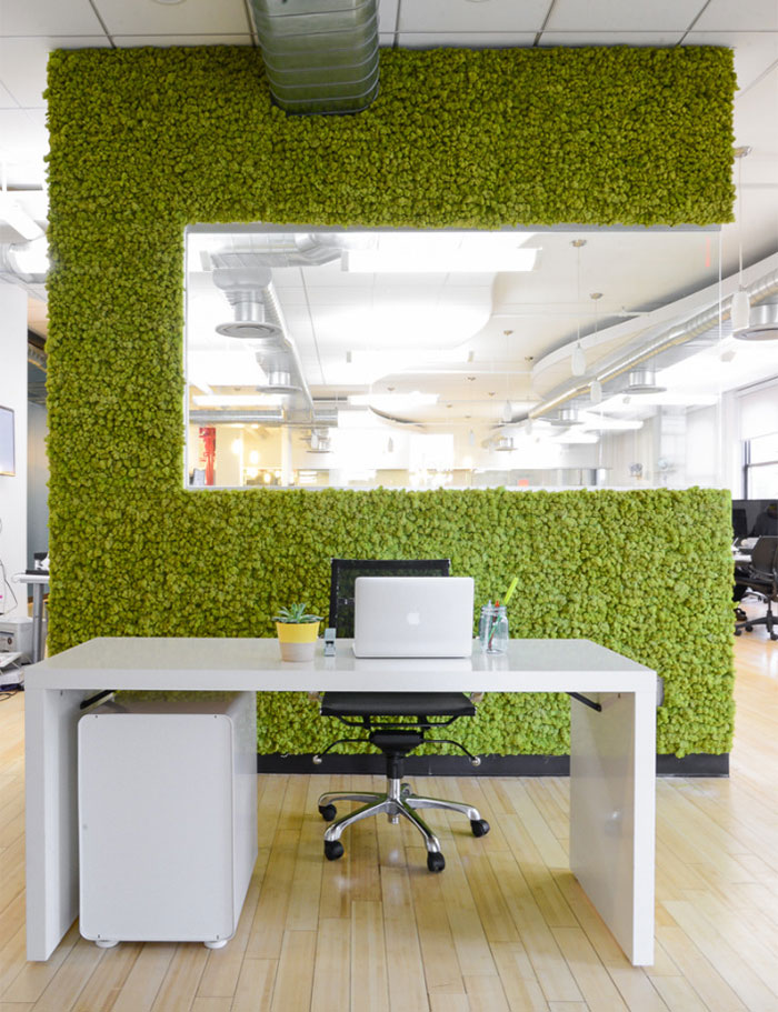 Picture Of peaceful indoor living wall designs for any home  2