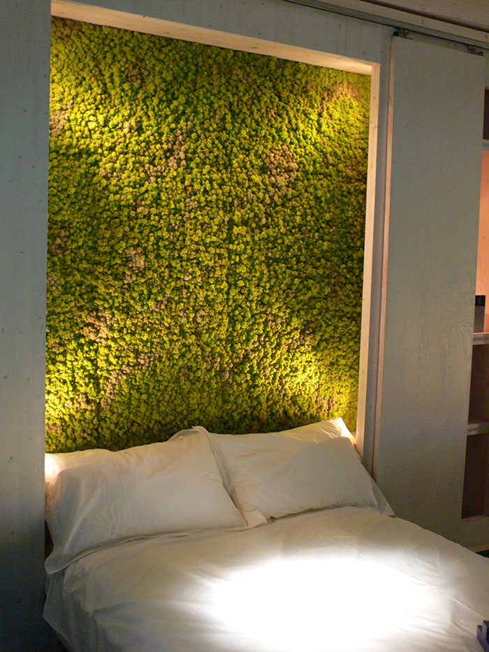 Picture Of peaceful indoor living wall designs for any home  4