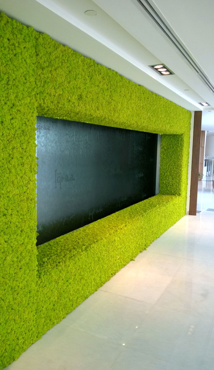 Picture Of peaceful indoor living wall designs for any home  6