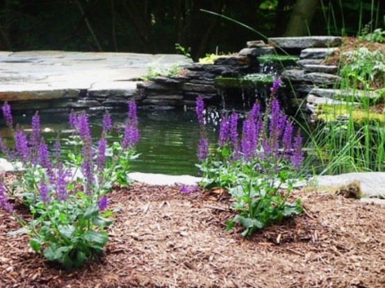 A Backyard pond is a great addition to a garden if you aren't going for a dry landscape.