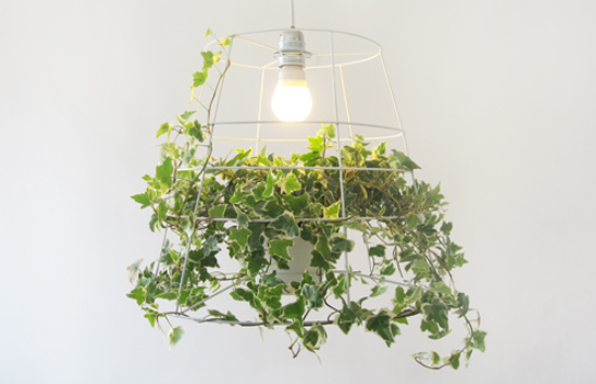 Creative Grow Lamp for Home – Photosynthesis Lamp