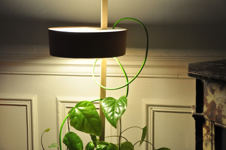 Practical Planter Pot Combined With a Lamp That Illuminate The Plant and Helps It Grows