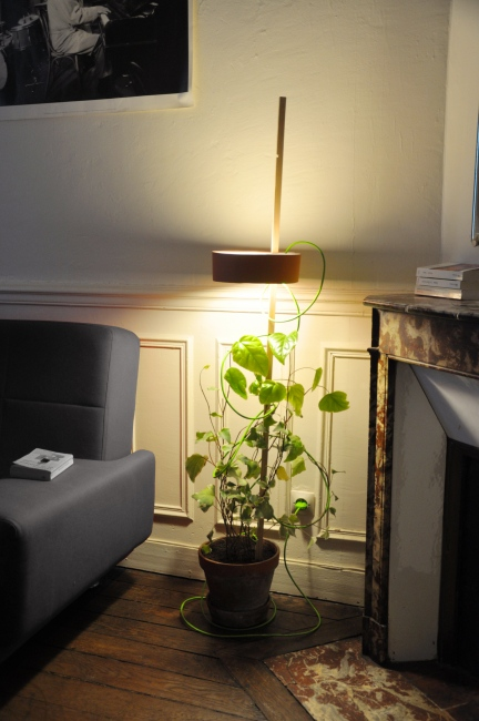 Planter With A Lamp