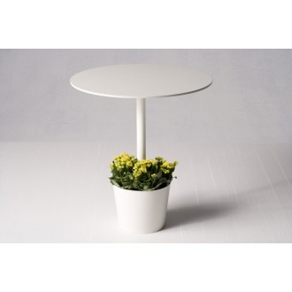 potted table