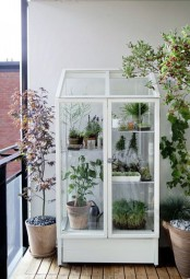 a white glass armoire as a grene house for a balcony, place any plants and blooms in pots there