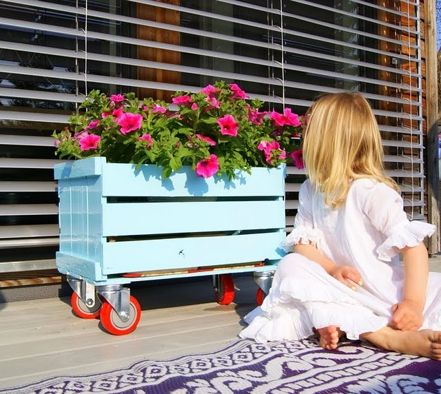 a blue crate on casters may be used to place some planters or any other stuff to store