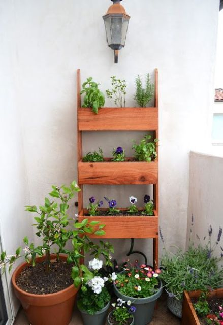 a wooden shelf with three tiers is used to create a small balcony garden
