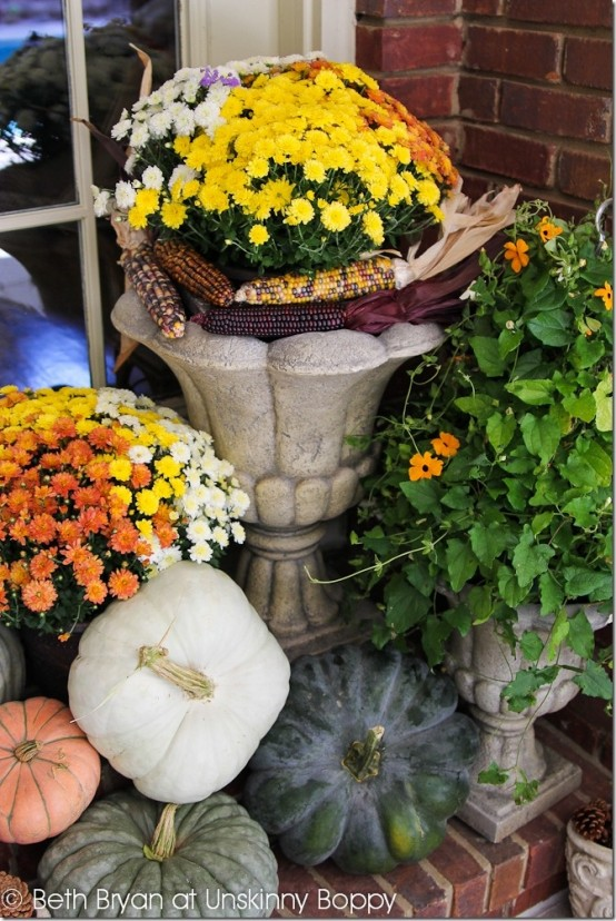 Add some corn hobs to your arrangements to accompany all these pumpkins.