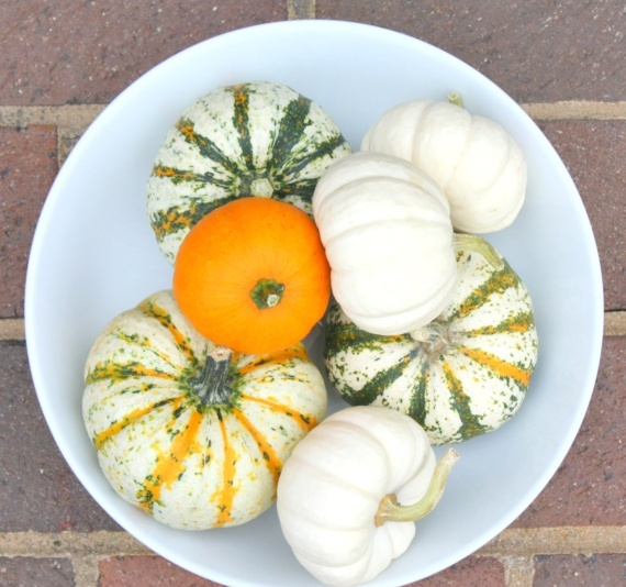 a bowl with natural and non painted pumpkins is a cool fall centerpiece or just decoration
