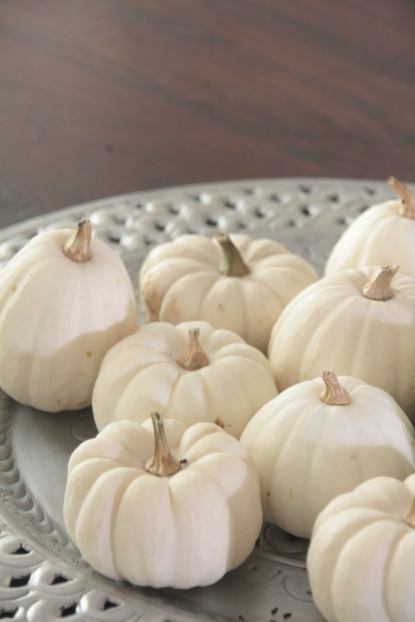 a tray with white pumpkins is a beautiful natural decoration for the fall, it will fit any space