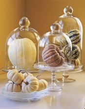nautrla pumpkins in cloches and in a bowl are easy and stylish modern rustic decor for your home
