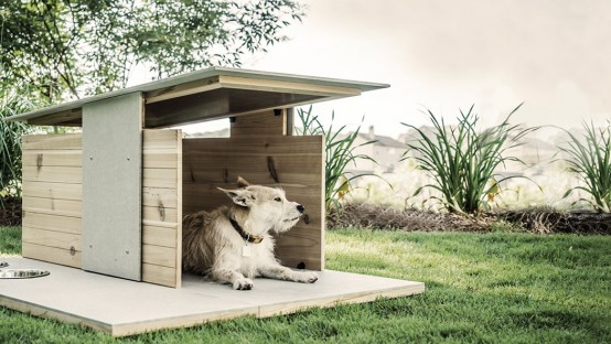 Puphaus: Stylish Modern Digs For Your Dog