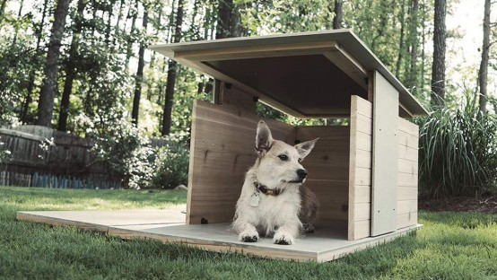 Puphaus Stylish Modern Digs For Your Dog