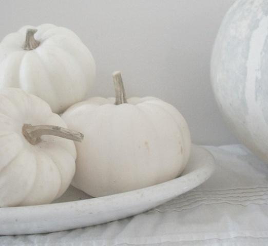 Pure White Halloween Elegant Ideas