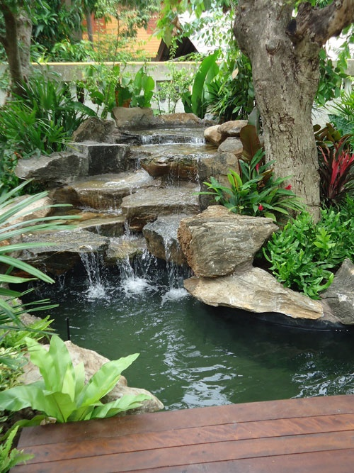 75 relaxing garden and backyard waterfalls digsdigs for Ornamental pond waterfall