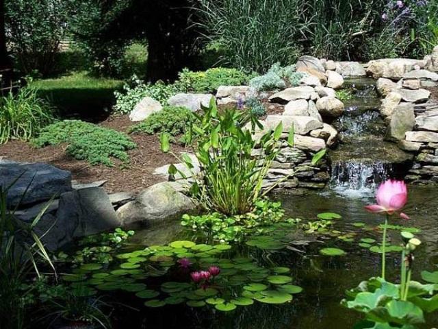 Relaxing Backyard And Garden Waterfalls