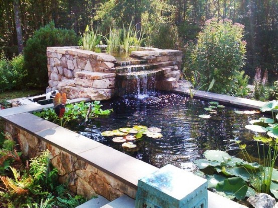 Waterfall could become a practical addition to your fish pond when you have a separate natural filtering zone with water plants.