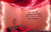 a pink canopy with lights is a romantic and very girlish idea