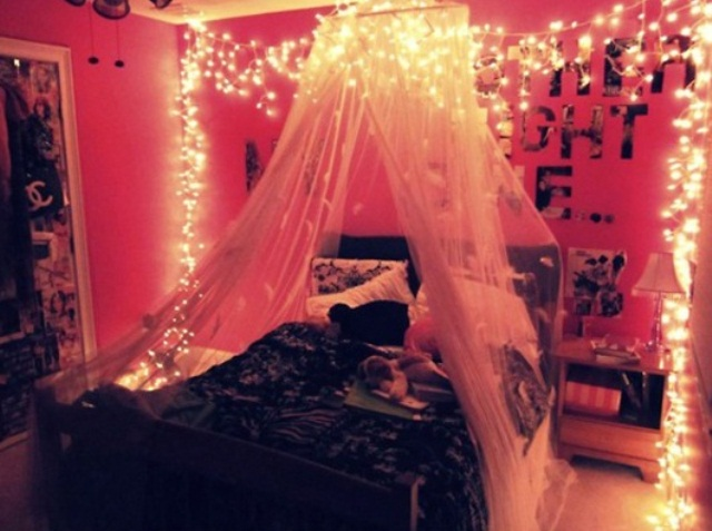 lighting over the bed and a canopy over it