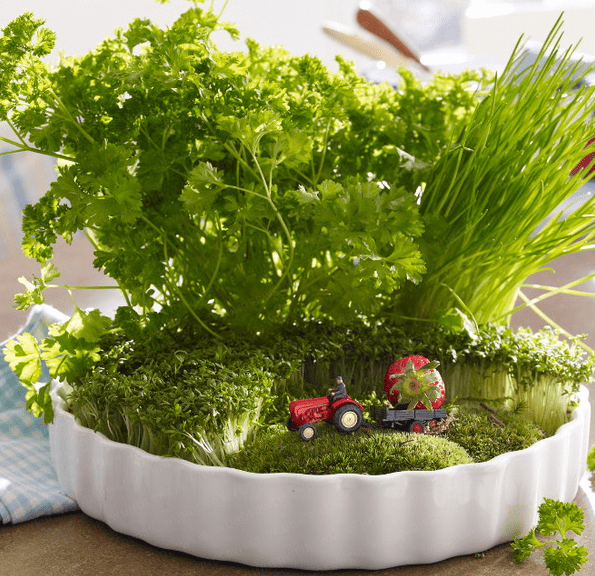 Rustic Veggies And Herbs Tablescape Ideas