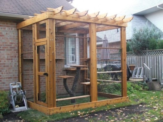 Safe Screened Porch : Safe and smartly organized outdoor cat areas digsdigs