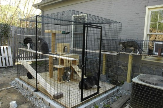 a large cat cage with a plywood cat tree and shelves and ladders to climb is a great place for your furry friends to stay