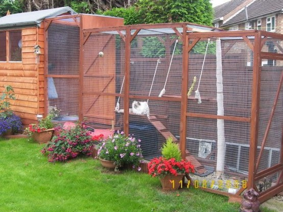 a large multi-level cat patio with cat trees, toilets, beds and toys hanging down