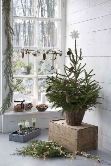 Nordic Christmas decor with an evergreen tree with pinecones in a basket, a pinecone and candle chandelier, greenery, lights and bulbs