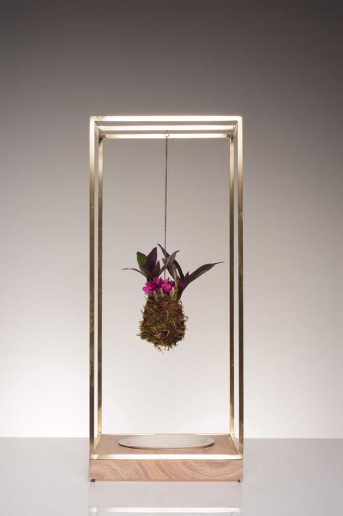 Sculptural Plant Bondage To Bring Nature Inside
