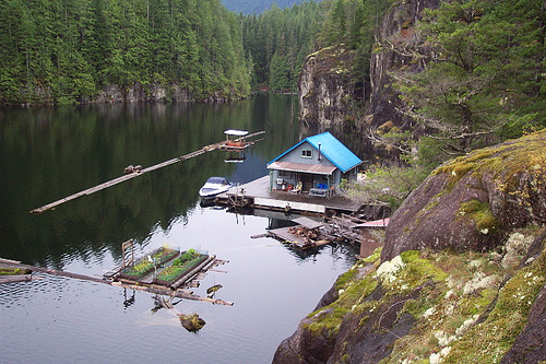 smallcabin_floating_house-2