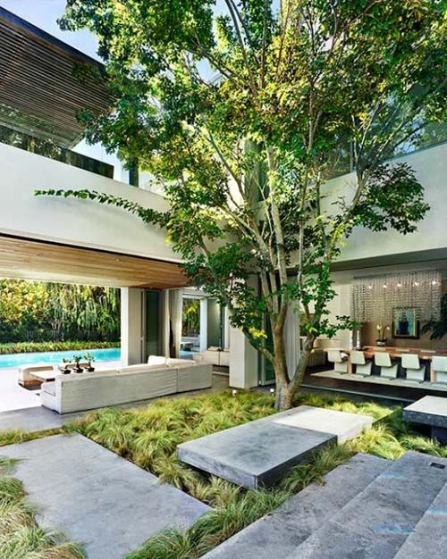 greenery and a single large tree growing in the courtyard right in the center of the house create a cool private space