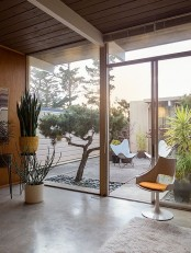 growing trees and potted plants right on the terrace that is inside the house  and makes it feel fresh and lively