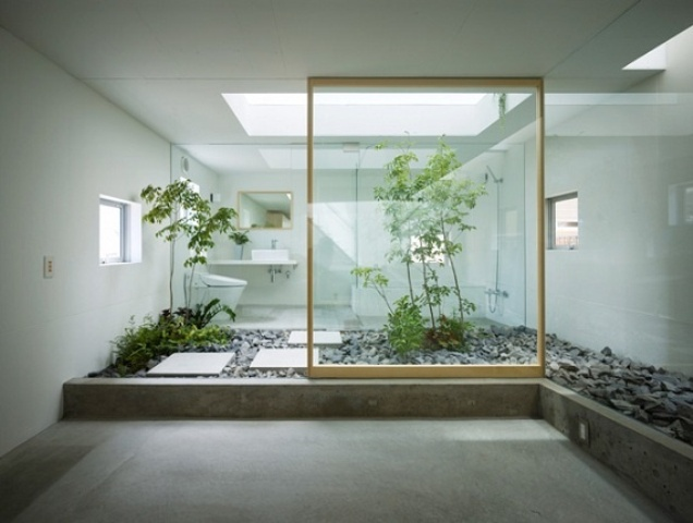 a bathroom united with an indoor courtyard to make it relaxing, with lots of pebbles and greenery growing here