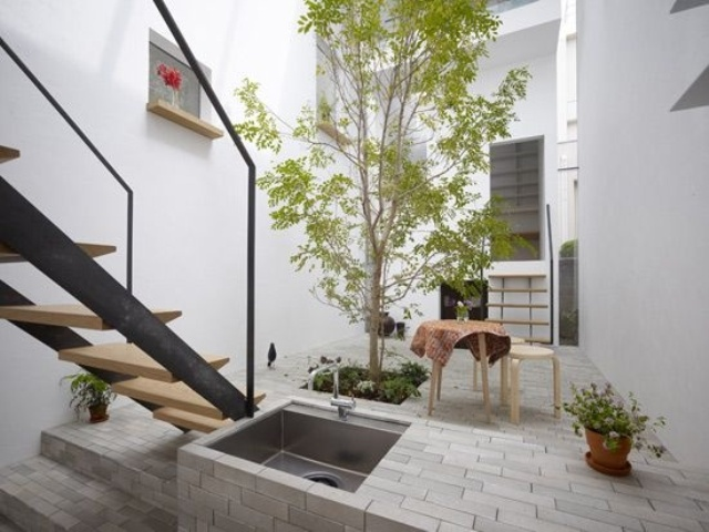a single tree growing in the courtyard and some potted greenery for a cozy and fresh look in the city jungle