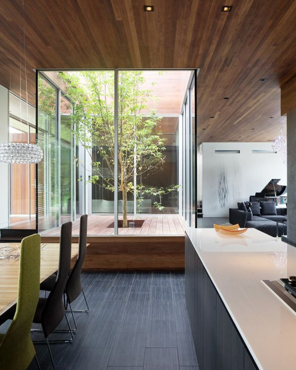 a small indoor courtyard deck with some greenery and trees growing under a skylight is a very refreshing diea