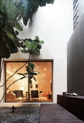 an indoor courtyard with pebbles and some trees growing right here is a cool and fresh idea