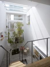 an indoor courtyard with a single tree growing in the center that is lit up with skylights and looks fresh and cool