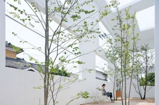 trees growing right from the floor create a chic and cool garden right inside the space and make the space feel alive