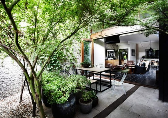a terrace inside the house with potted plants and some trees growing here is a cool idea to refresh the spaces